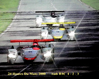 24 Hours of LeMans Audi team winners - 2000