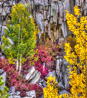 Granite Fall Colors + Red