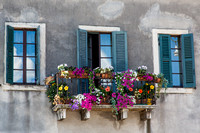 Verona Flowers Window