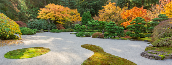 japanese Garden Fall Color Raked Patterns